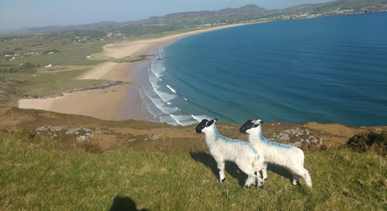 Knockalla Caravan & Camping Park Donegal beside beautiful blue flag beaches
