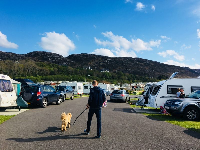 Pets allowed dog friendly Knockalla